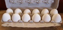 1 Dozen - WHITE CERAMIC NEST EGG FAKE DUMMY EGGS TO TRAIN YO