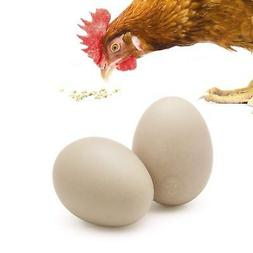 2 ceramic chicken eggs encourages egg laying