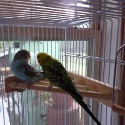 7'' Pet Parrot Supply Wood Corner Shelf Laddered Platform St