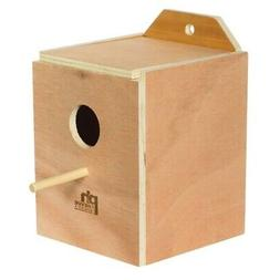 Lovebird Inside Nest Box