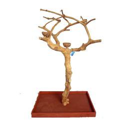 "A&E Cage Company Small Java Wood Tree Box - 38""x24""x61"""