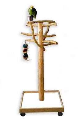 AFL2 Manzanita Activity Center Parrot Tree Bird Stand Toy Pl