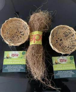 Living World Bamboo Canary Nest Play Toy