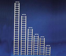 North American Pet BBO22793 Bob Parrot Ladder, 24-Inch