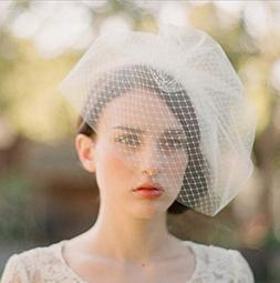 Deniferymakeup Bridal Veil Ivory Birdcage Veil Wedding Veil