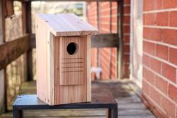 Eco Bird House for Bluebird/Swallow/Flycatcher/Nuthatch/Titm
