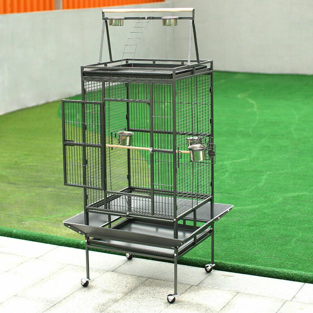 173cm Parrot Play Activity