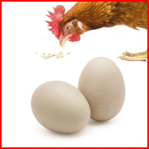 2 Chicken Natural Looking 7Cm Nest Laying