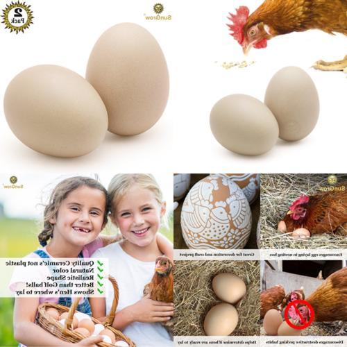 2 ceramic chicken eggs natural looking 2