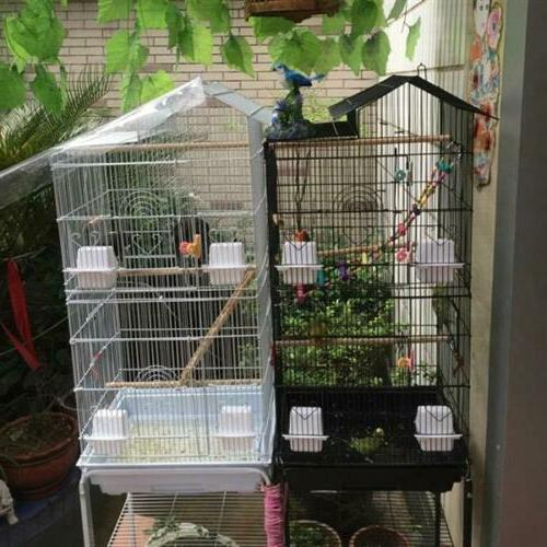 39 large tall bird parrot cage canary