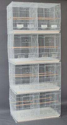 "4 Large 30"" Breeding Budgies For Aviaries Canaries Bird Cage"