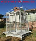 "XX Large 40""x30""x72""H Parrot Cage For Macaw African Grey Ama"