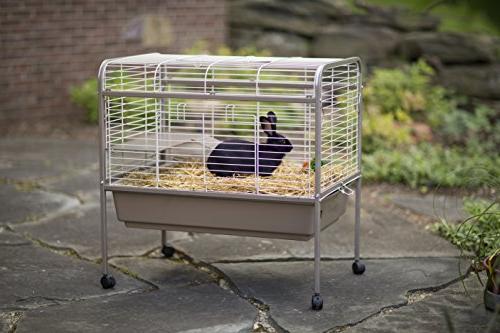 Prevue Animal Pet