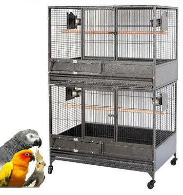 54 large double stackers breeding multiple bird