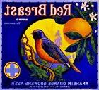 Anaheim Red Breast Bluebird Bird Orange Citrus Fruit Crate L
