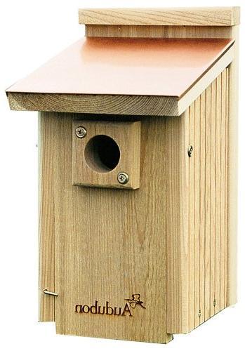 audubon coppertop cedar wood bluebird