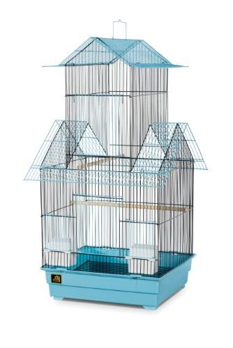 Beijing Cage Color: Blue and