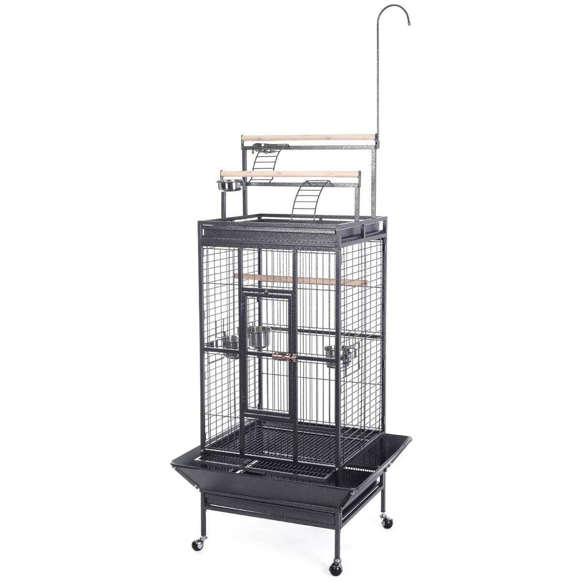 bird cage w ladder play top strong