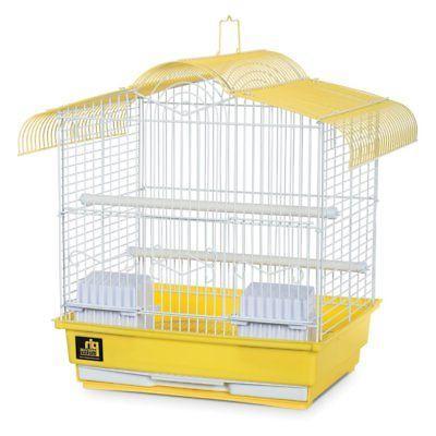 bird cage yellow