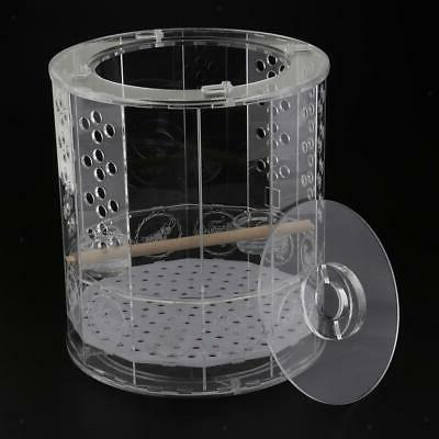 Bird Cages Nest with standing water feeder for birds