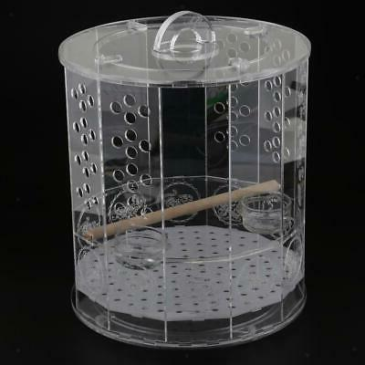 Bird Cages standing water feeder birds
