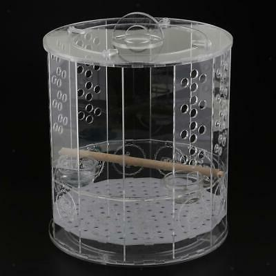 bird cages nest with standing perch water