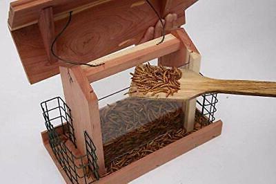 BIRD FEEDER Window Suet Holder Wooden Cedar