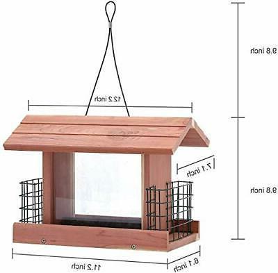 bird feeder double plastic window suet holder