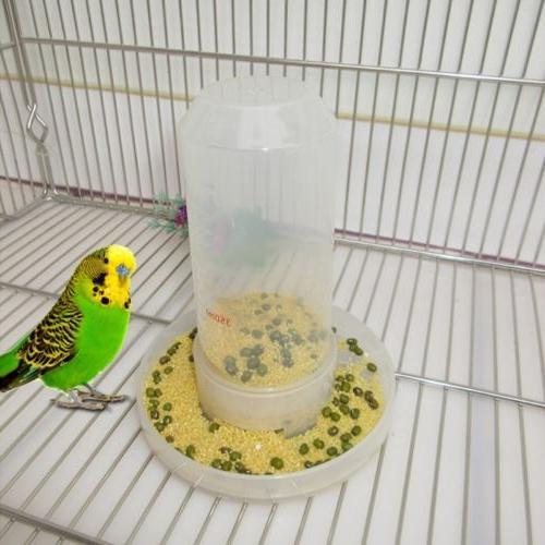 Bird Feeder Food Water Feeding Drinker Automatic Parrot Pet
