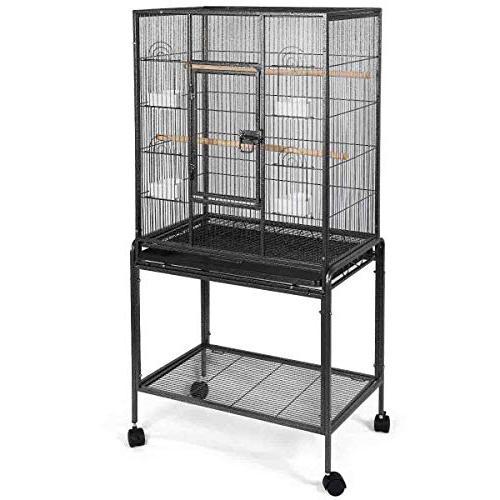 bird parrot cage chinchilla cockatiel