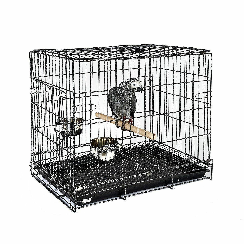 bird parrot parakeet travel carry cage african
