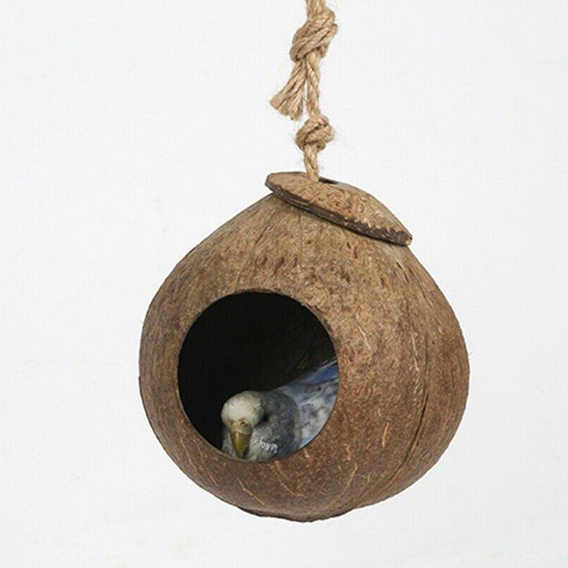 Bird Ladder Parrot Perch