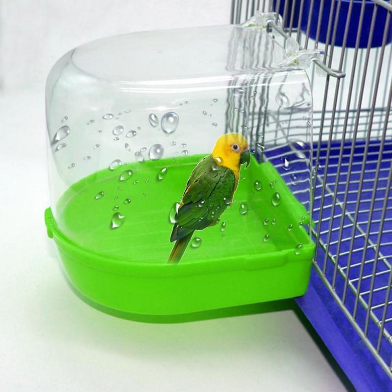 clean parrot bird bathtub box bird bath