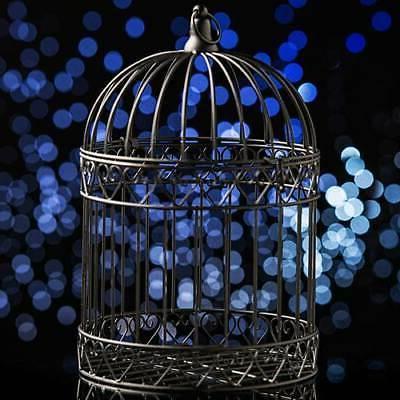 decorative black bird cage centerpiece dress wedding
