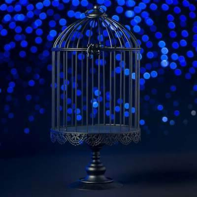 Decorative white Black Bird Cage