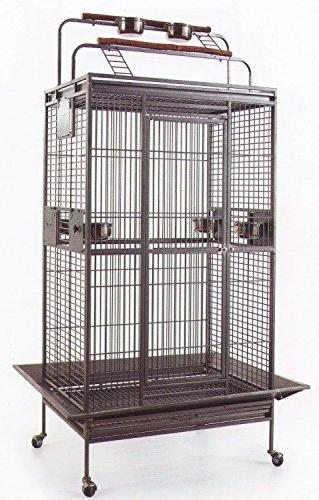 wrought iron bird parrot cage