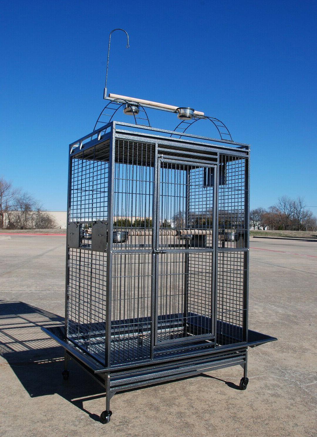 Cage Conure