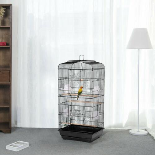 cockatiel conure parakeet budgie lovebirds canary finch