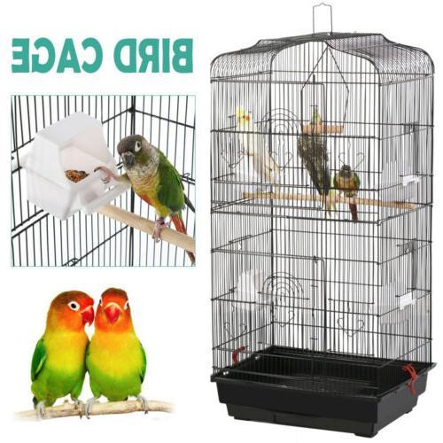 Cockatiel Conure Parakeet Lovebirds Flight Bird