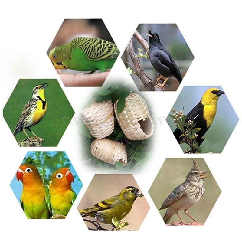 <font><b>Bird</b></font> <font><b>Bird</b></font> <font><b>Finch</b></font> Hideout Outdoor Hut 19 Dropship