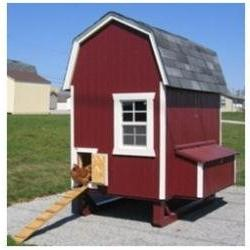 4 x 6 Gambrel Barn Chicken Coop