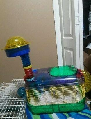 Hamster Tubes Exercise Trail