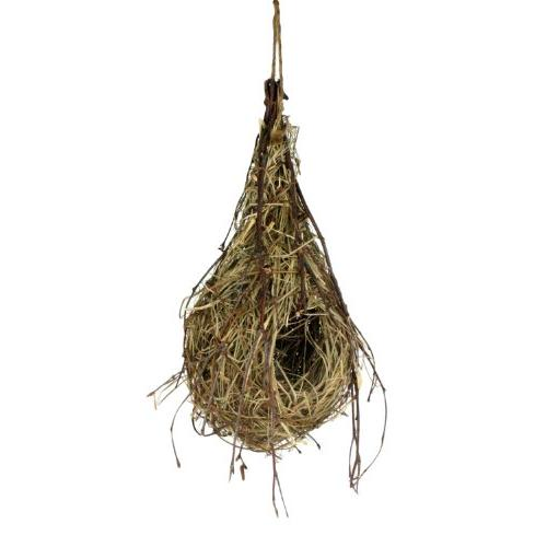hanging oriole birds nest