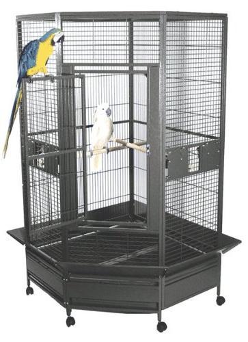 kapoho kave corner bird cage