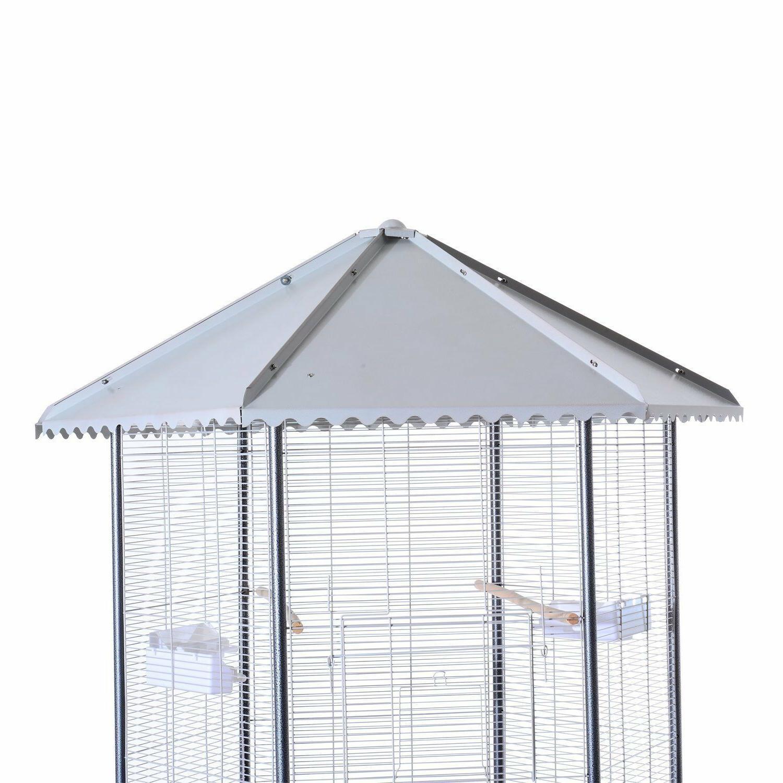 Parrot Macaw Cockatoo outdoor indoor house
