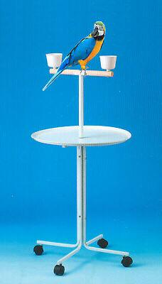 Large Play Stand With Metal Base Parrot Amazon African Grey