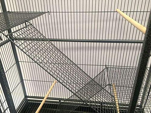 Mcage Flight Cockatiel Lovebird Finch Cage Removable 32-Inch 19-Inch 64-Inch