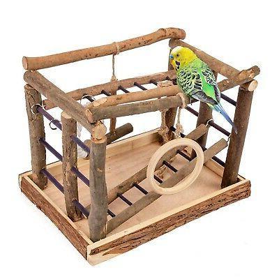 living playground birds