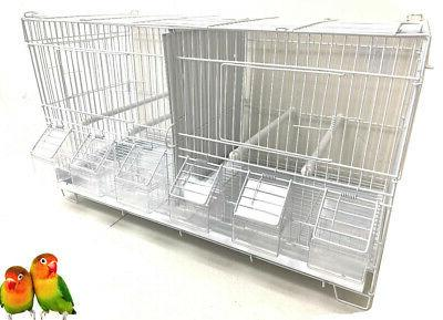 Lot 4 Bird Flgiht Finch Breeding With Dividers