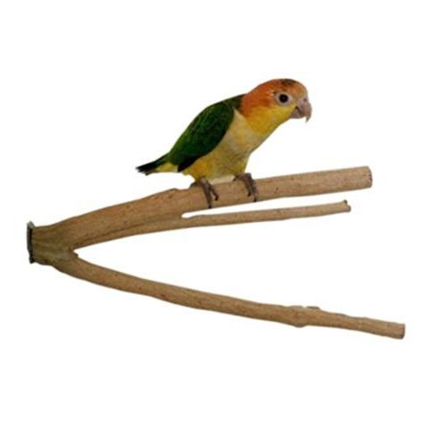 Birds LOVE Bottlebrush Cage Perch